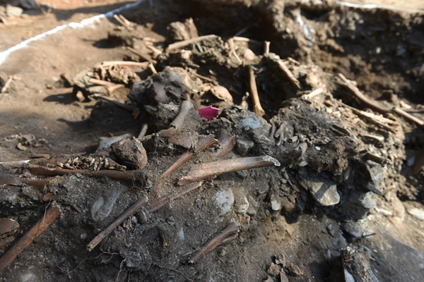 대전 골령골 제 1 집단희생지에서 발굴된 희생자 유해.  유해가 뒤엉켜 있다.