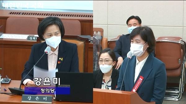 지난 15일 노동부 국정감사에서 정의당 강은미 의원이 한국조에티스 이윤경 대표에게 질의하고 있다.