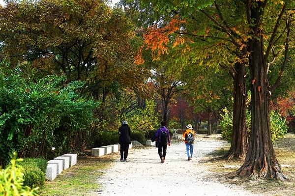 가을 정취를 느끼며 산책을 즐기는 시민들