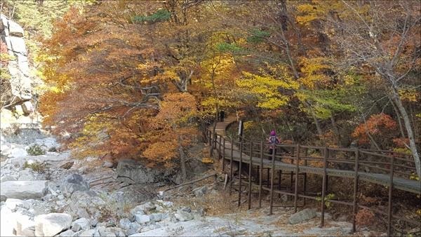 가을로 물든 가야산 소리길에서.