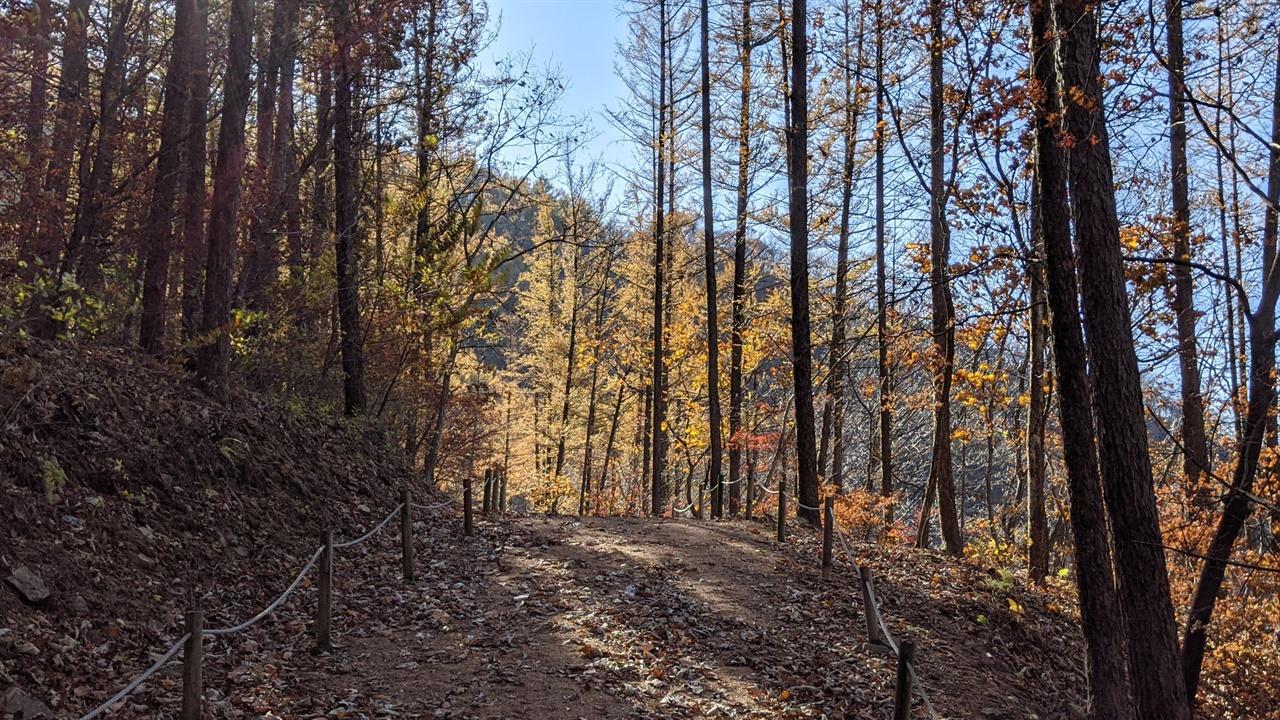 한탄강 남쪽의 벼룻길 11월 늦가을의 오솔길이 아름답다.