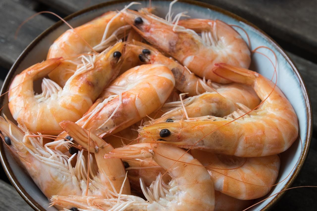 우리가 먹는 흔한 식재료인 새우는 대부분 양식으로 길러진다.