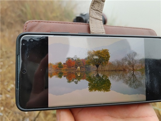 박충수(58) 한국사진작가협회 제천 부지부장이 일주일 전 사진협회 회원 두 명과 함께 답사를 다녀오며 찍은 전북 진안의 주천 생태공원 풍경 사진을 보여주고 있다.