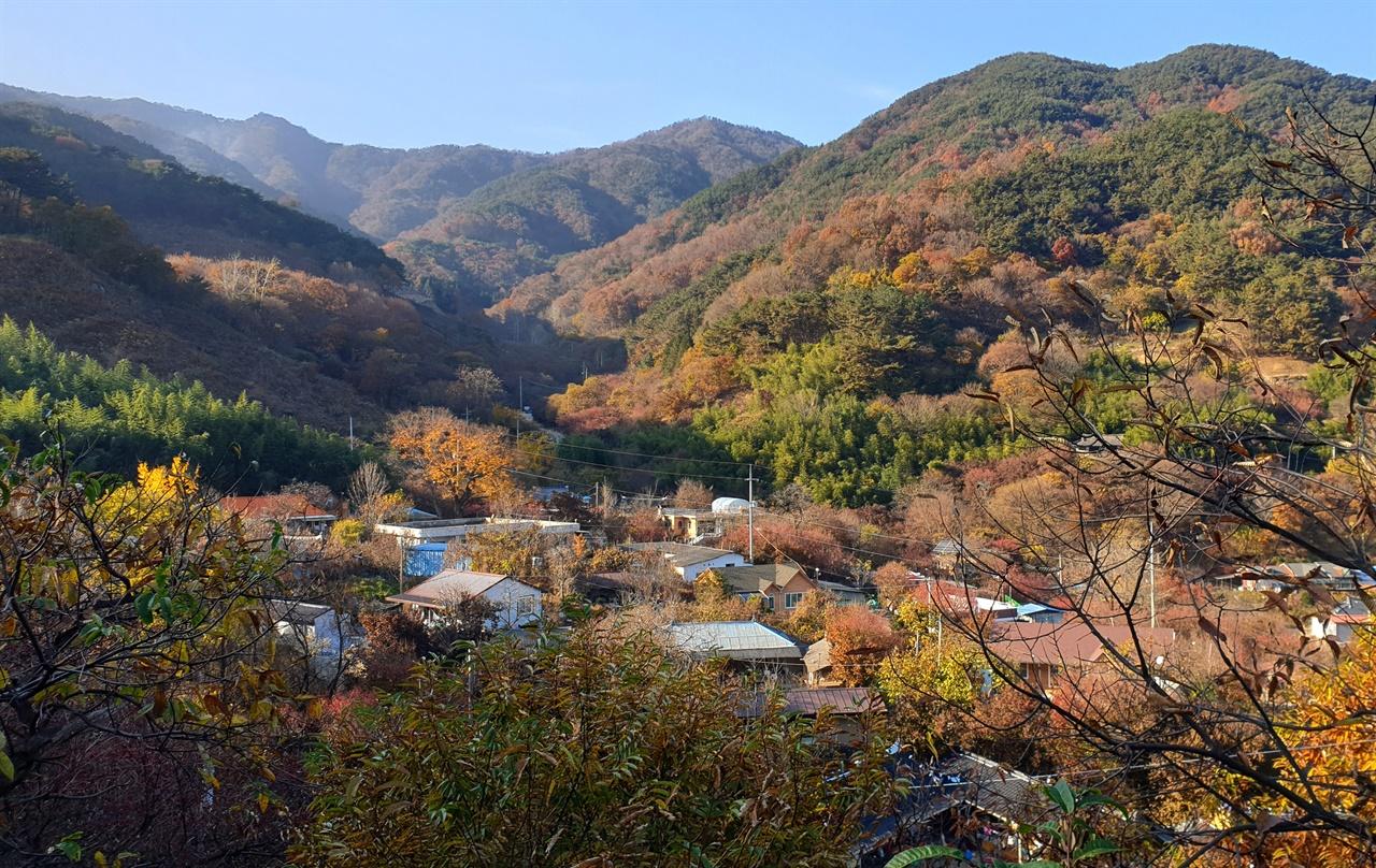 산수유나무를 심어 자식들을 키운 구례군 산동면 현천마을 전경. 지난 11월 15일 오후 풍경이다.