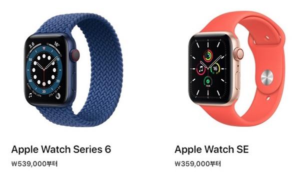 애플워치 시리즈 6 와 애플워치 SE