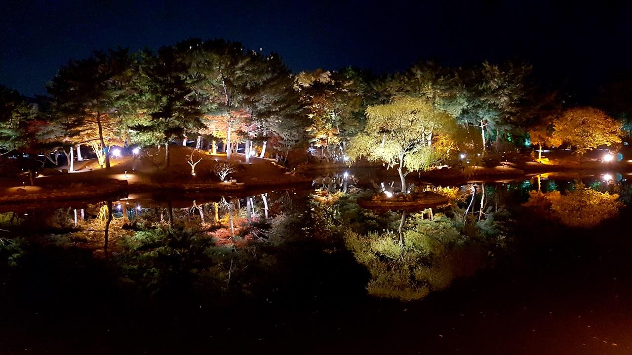 경주 동궁과 월지 야경 모습