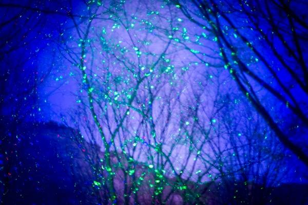 용마폭포공원의 몽환적인 조명 LED 불빛을 받은 나무가 영화의 한 장면을 연상시킨다.