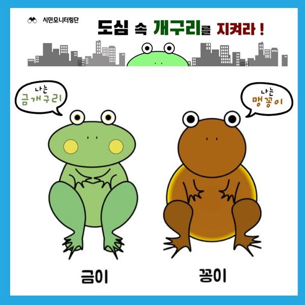 '금이와 꽁이' 운정3지구 금개구리와 맹꽁이를 캐릭터로 만든 '금이와 꽁이'