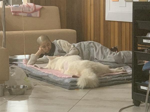 유연 스님이 누워서 나모를 물끄러미 쳐다보고 있다.
