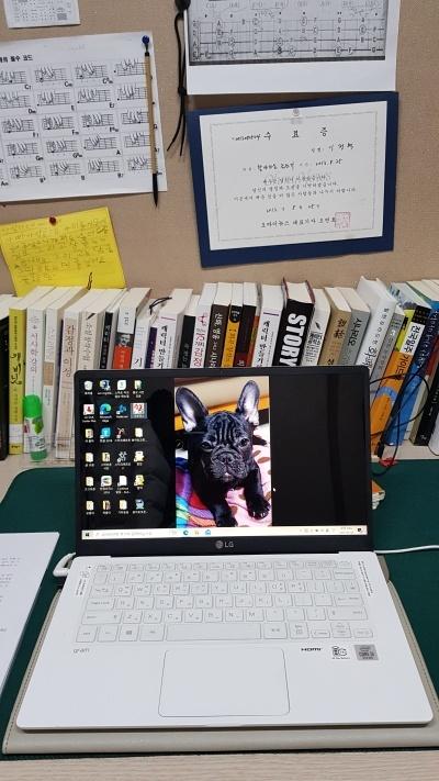 나의 책상 풍경 창작과 관련된 책들로 채워진 책상. 그리고 나의 보물 1호인 노트북