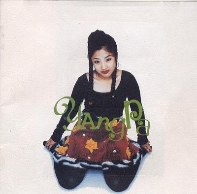 양파는 데뷔곡 <애송이의 사랑>으로 지상파 3사를 포함해 음악방송 17관왕을 차지했다.