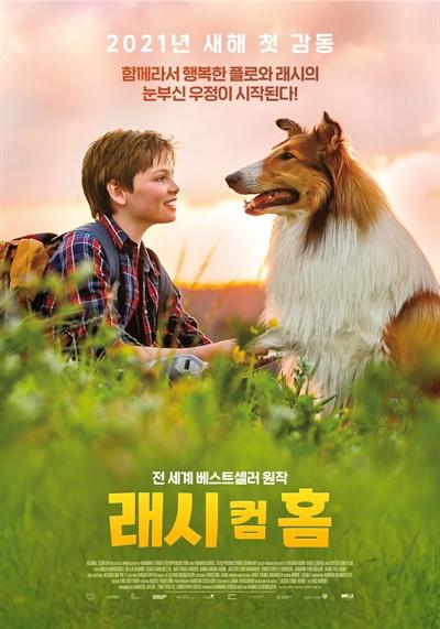 영화 <래시 컴 홈> 포스터