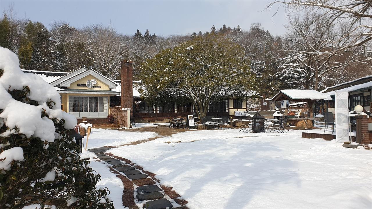 복합문화공간 39-17마중 전경. 당시 한옥과 양옥, 일본가옥의 건축양식을 버무려서 지은 집이다. 마당에 큰 금목서와 은목서가 있다. 지난 1월 1일 풍경이다.