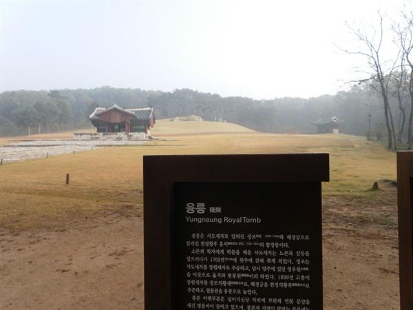 사도세자의 무덤. 1899년에 현륭원에서 융릉으로 격상됐다. 경기도 화성시 안녕동에 있다.