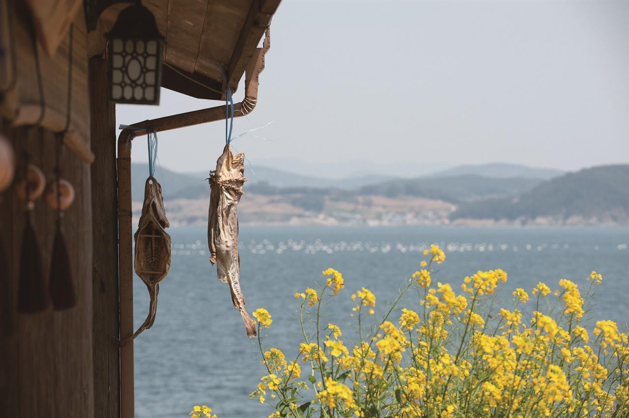 통영 섬집 처마에 생선 말리는 풍경.
