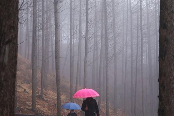함양 병곡면 대봉산휴양밸리.