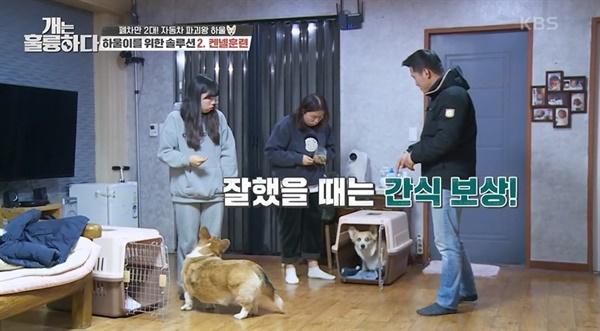 KBS2 <개는 훌륭하다> 한 장면.