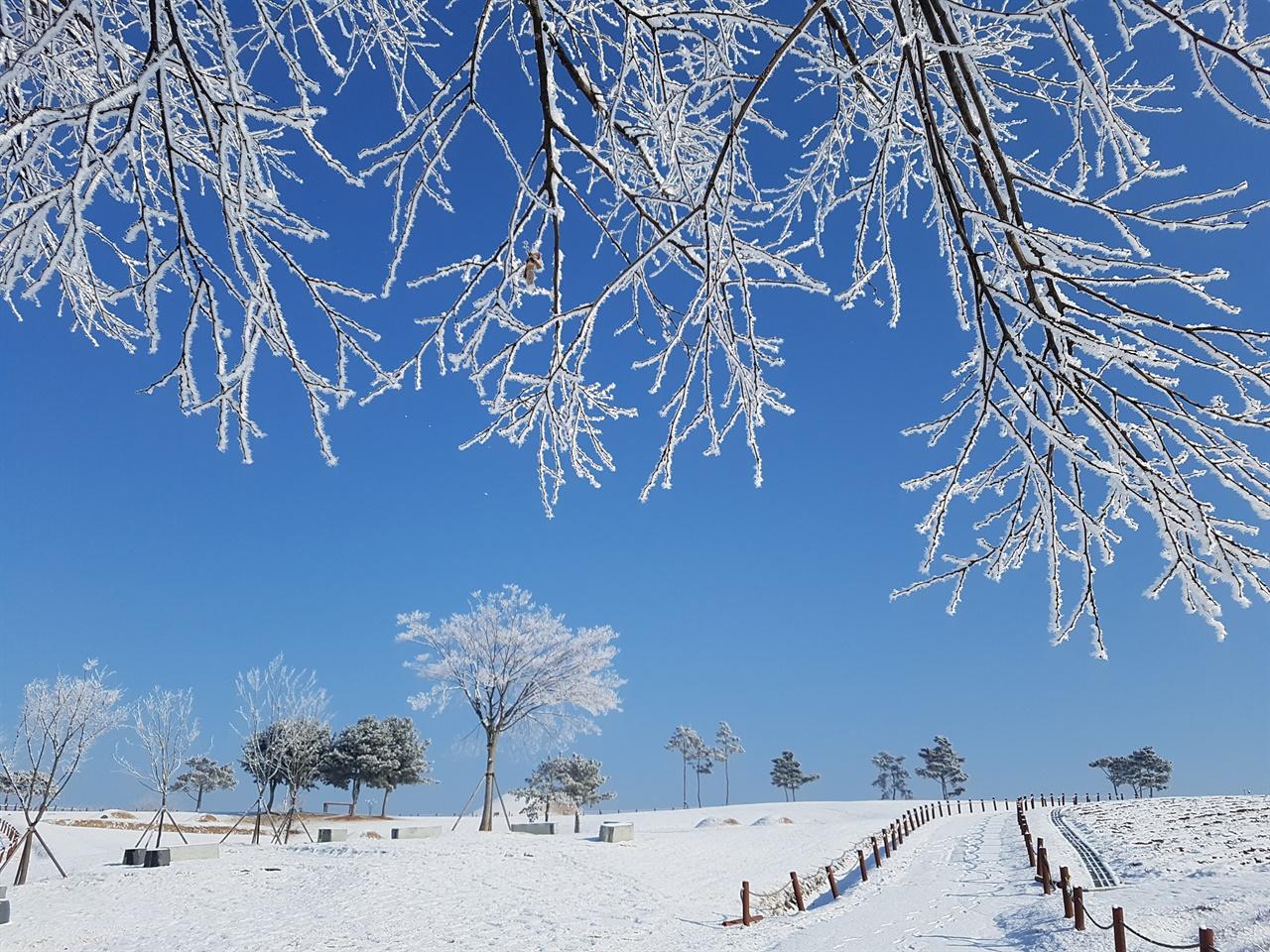 경북 의성군 조문국 유적지의 겨울 풍경.