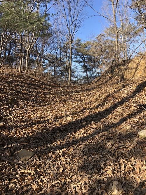 성황당 고개 잊힌 고갯길이 야생의 생명력으로 봄을 준비한다.
