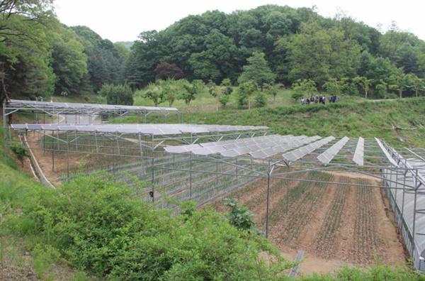 새마을운동 중앙연수원 내 유기농-태양광 발전소