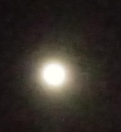 대보름달 흐릿하지만 둥그런 달이 내려보고 있어 반가웠다