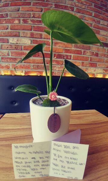김혜원(남양주 도농초등학교 5학년) 양이 남양주시 미금로에 있는 우리 동네 꽃집 <청자다방&플라워>에서 2차 재난기본소득으로 구입한 몬스테라 화분과 꽃집 사장님이 공짜로 주신 카드에 직접 쓴 감사의 손편지.