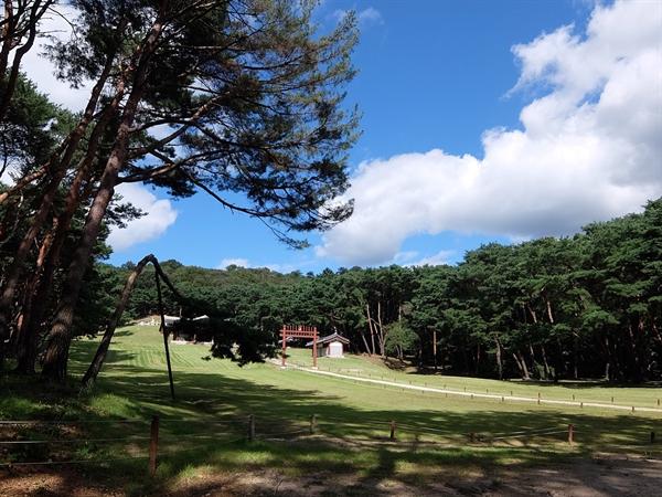 서오릉에 있는 조선 숙종의 원비 인경왕후 김씨의 무덤인 익릉의 모습.