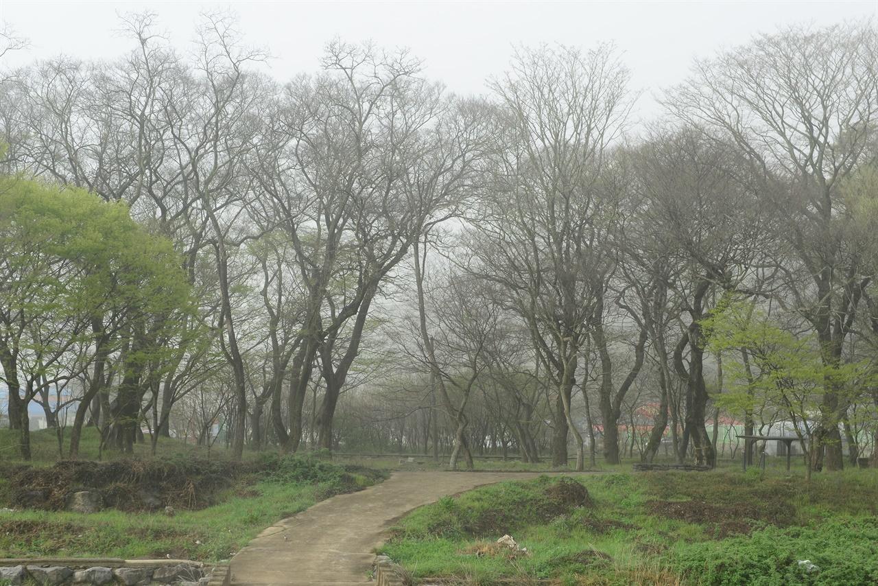 백암 아름다운 숲 화순군 도곡면 천암리 백암마을에 있는 숲, 500 년 전 문창후가 터를 잡고 살기 시작했다.