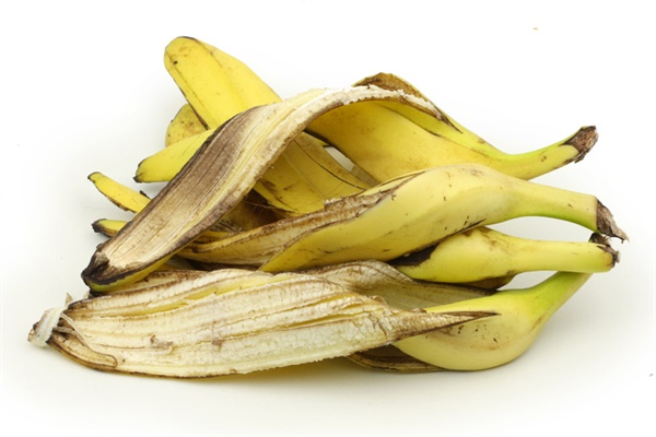 바나나껍질