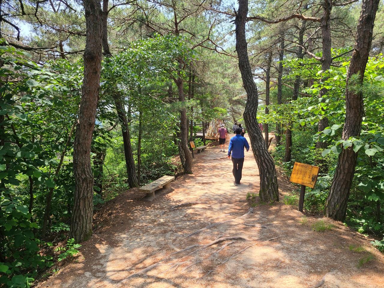 장안사에서 회룡대 정자까지는 10여 분 거리이다. 호젓한 길을 따라 유명 시인의 시를 감상하며 걷는 재미가 쏠쏠하다.