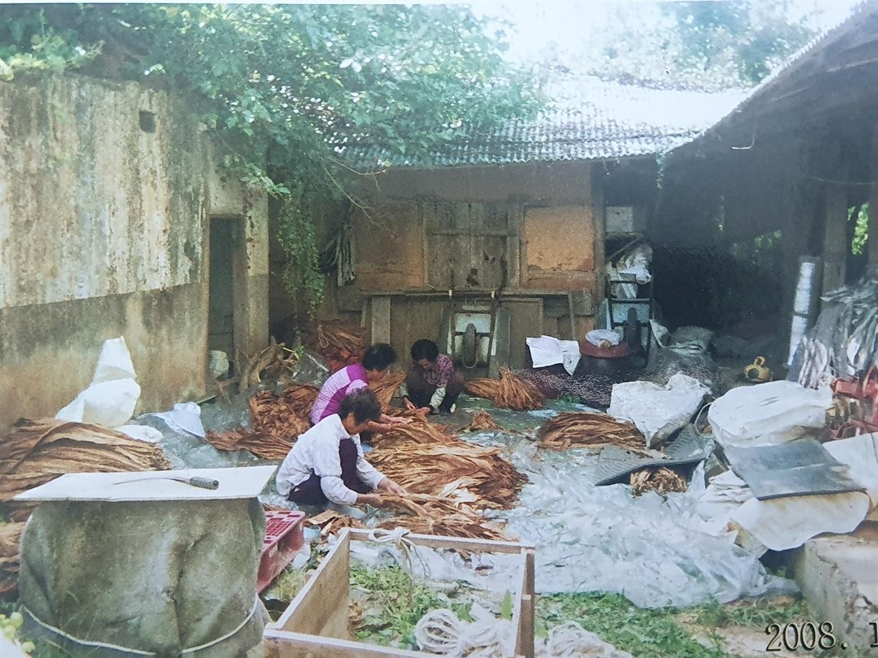 지난 2008년에 촬영한 담배농사를 짓고 있는 주민들