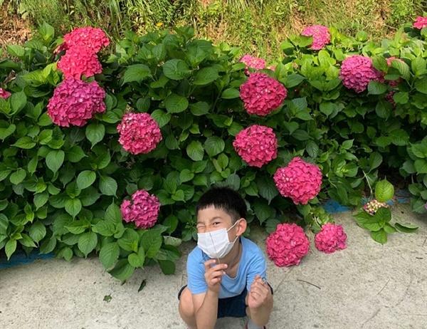 수국 꽃 앞에서 포즈를 취하고 있는 어린이의 표정이 해맑고 귀엽습니다
