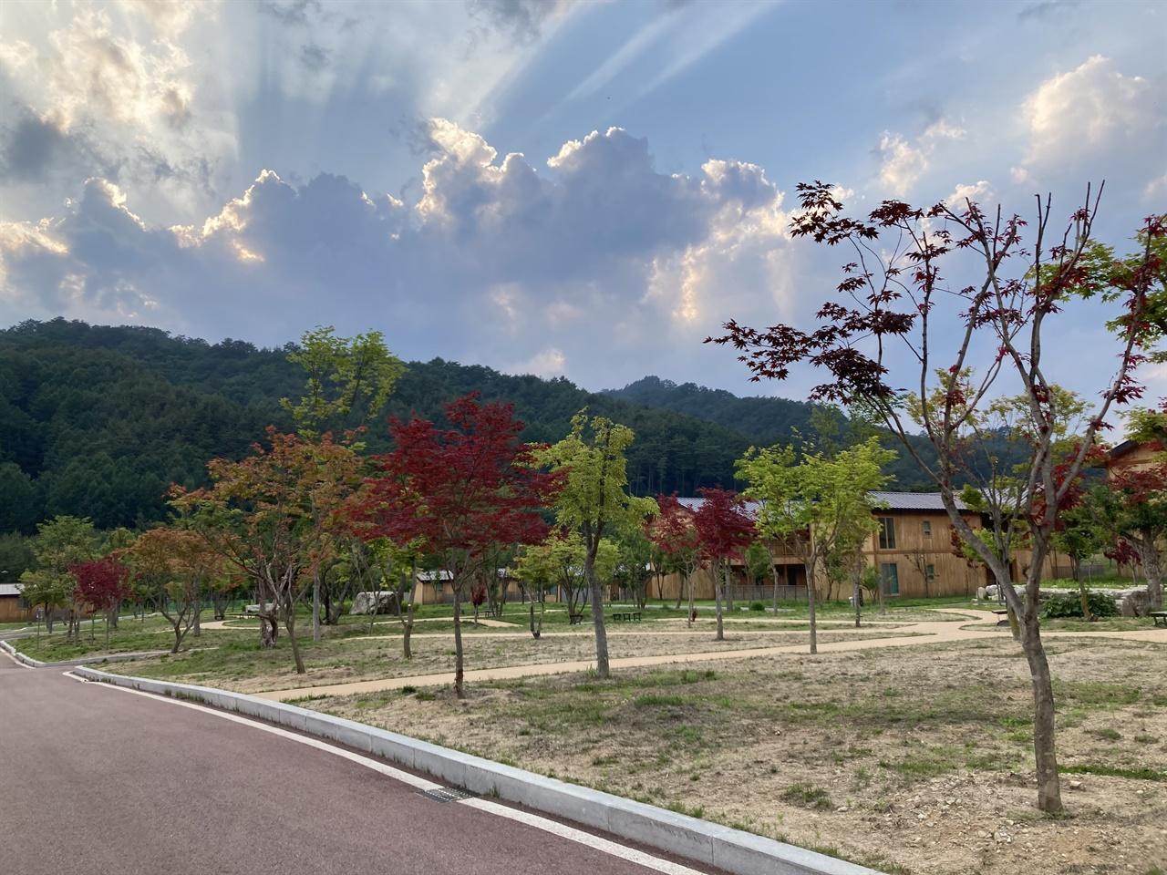 옴뷔 명상 마을 정원의 멋진 뷰