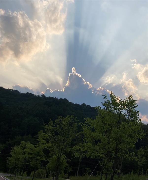 산책 도중 우연히 만난 '깨달은 자'를 닮은 구름