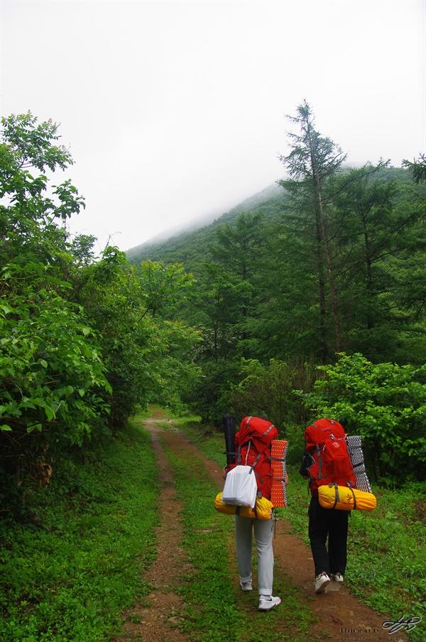 산속으로 비가 오락가락 하는 와중 안개에 싸인 산속으로 학생들이 걸어가고 있다.