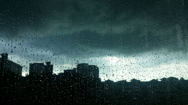 모든 소음을 일시에 멈추게 만드는 시원한 여름 '비'
