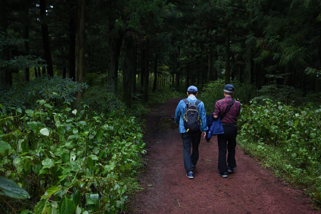 장생의 숲길 울창한 숲속길은 한낮에도 나무들에 햇빛이 가려져 약간 어두운 분위기다.