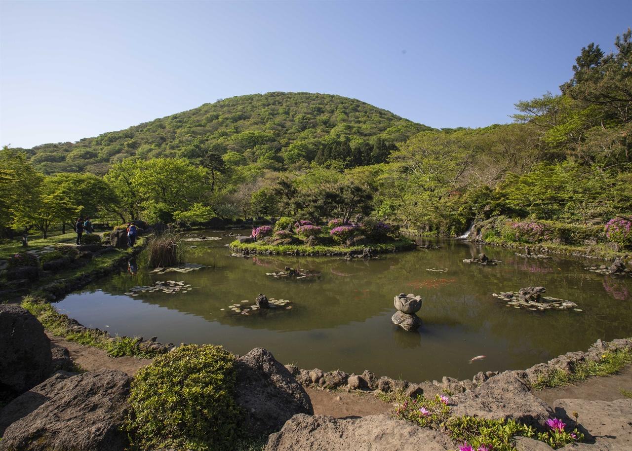 절물오름 절물자연휴양림에 아름답게 조성된 연못 뒤로 절물오름이 보인다.