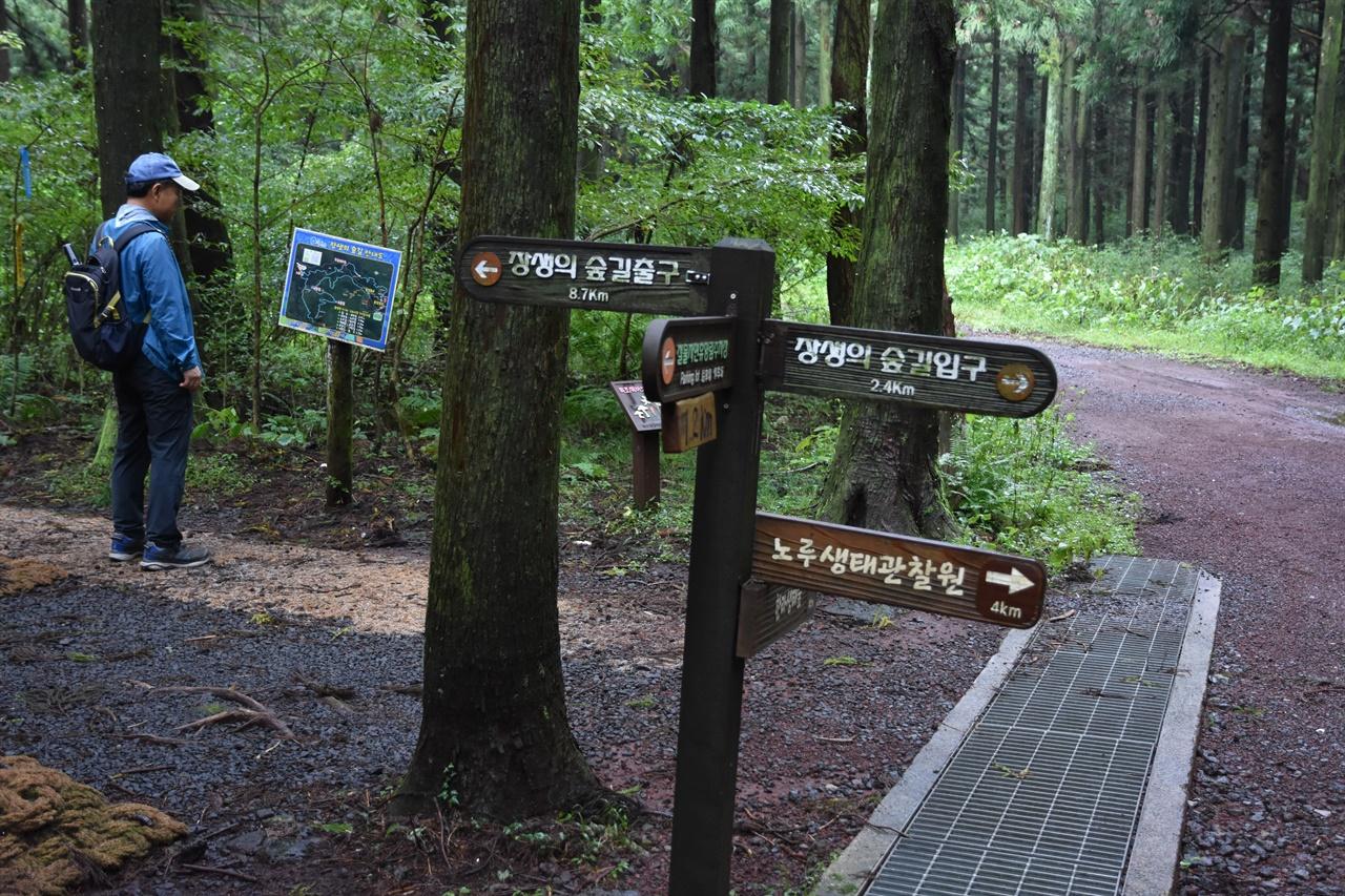 장생의 숲길 사거리 갈림길 출발점에서 2.4킬로 지난 지점에 사거리가 나타난다. 여기서 휴식을 취하게 되는데, 한라생태숲으로 갈 수도 있다.