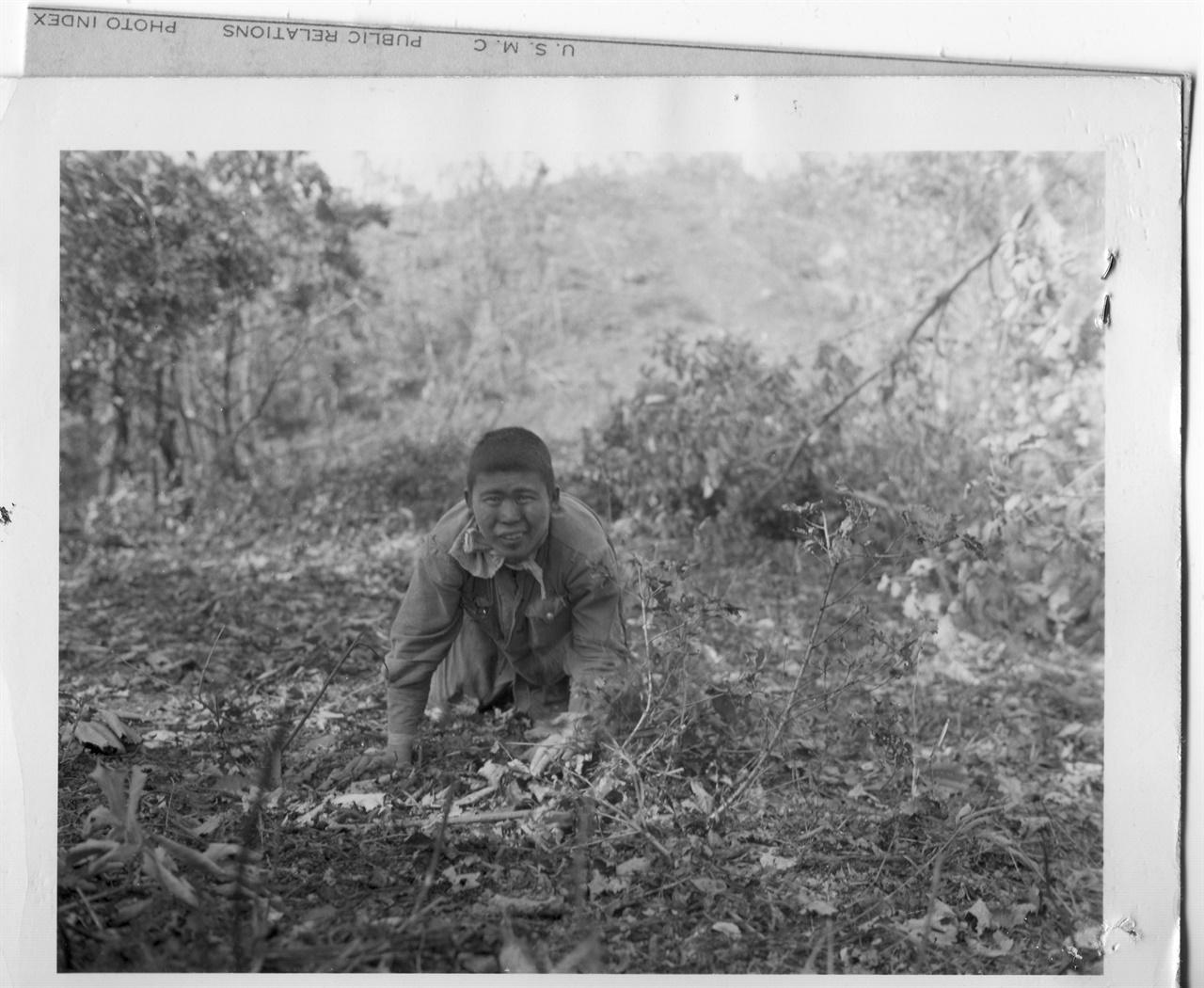 1951. 9. 20. 전쟁은 한 인간을 짐승처럼 만든다. 북한의 한 병사가 짐승처럼 기어오면서 투항하고 있다.