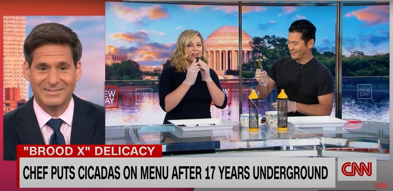CNN뉴스 스튜디오에 등장한 '매미 김밥' 매미 요리 열풍이 불고 있음을 실감케 하는 미국 CNN뉴스(SNN뉴스 캠쳐 화면)
