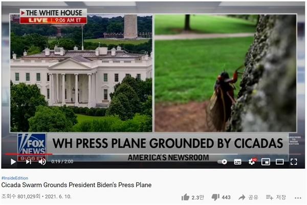 조바이든 태통령 영국 순방길을 가로막은 Brood-X 조바이든 대통령 영국 순방 동행 취재단 비행기가 17년 주기매미때문에 출발이 지연되었다는 소식을 전하는 미국 폭스 뉴스