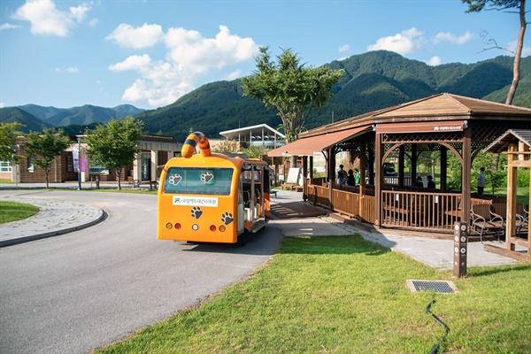 트램 출발역과 수목원 내부를 순환하는 전기버스 트램.