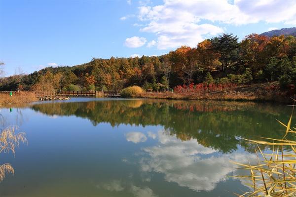 거울연못. 가을이 깊어지면 이런 풍경도 구경할 수 있을 것이다.