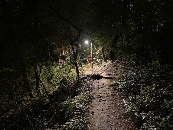 시나브로 어둠이 쌓이는 저녁 산길