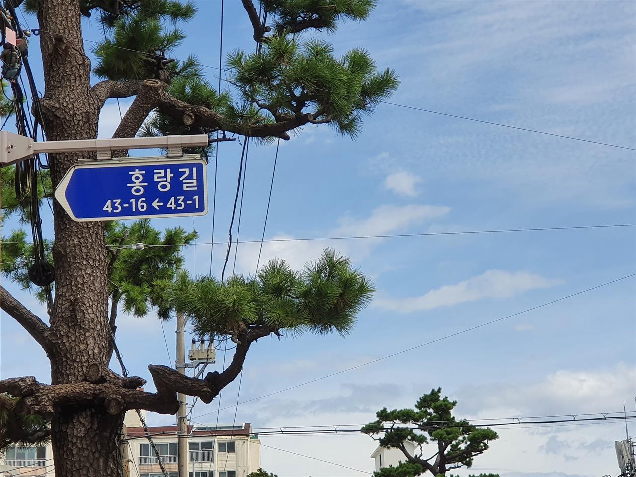 홍랑길  홍윤애가 묻혔던 지금의 제주시 전농로 주변 마을길이 홍랑길로 불린다.