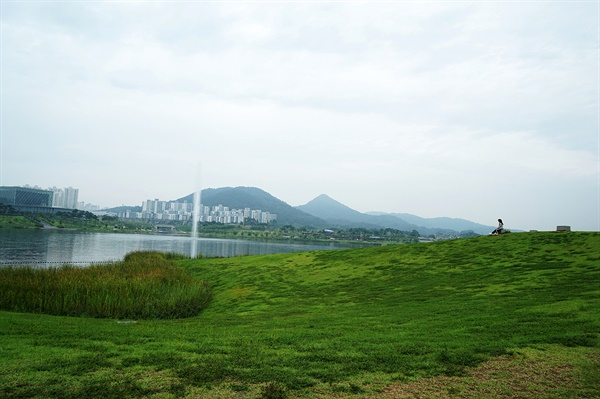 노무현공원 위 언덕과 호수공원 풍경
