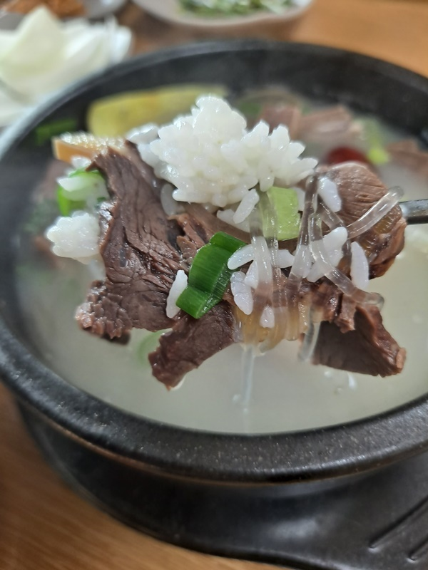 강진 여행길에 아침이 먹고 싶다면 주저 없이 찾아가도 될 만한 맛있는 소머리국밥이다.