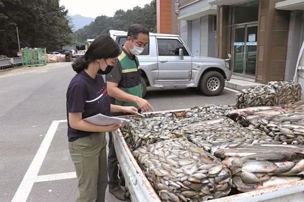 충북 옥천군 내수면 생태계 교란어종 구제사업