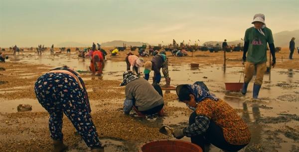 영상에는 천혜의 갯벌에서 주민들의 바지락 작업 등 역동적인 생활 모습이 담겨 서산의 팔색조 매력을 볼 수 있다.